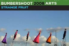 bumbershoot-08-initial-lineup.jpg