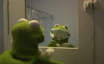Sad Kermit Covers Elli...