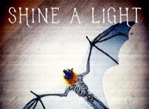 shine_a_light-cover.jpg
