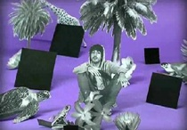 """New El Guincho Video – """"Palmitos Park"""""""