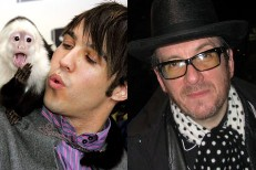 Elvis Costello Sings On New Fall Out Boy Single
