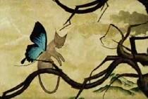 mercury_rev-video-butterflys_wing.jpg