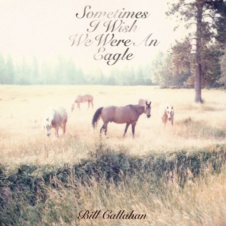 bill_callahan-sometimes.jpg