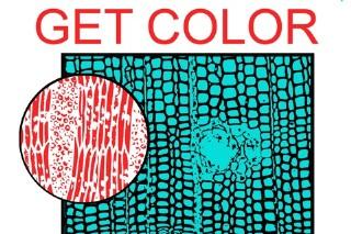 HEALTH Release <em>Get Color</em> Details