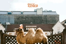 Wilco (The Album Art)