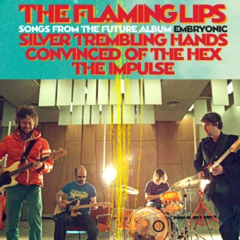 flaming-lips-hex-silver.jpg