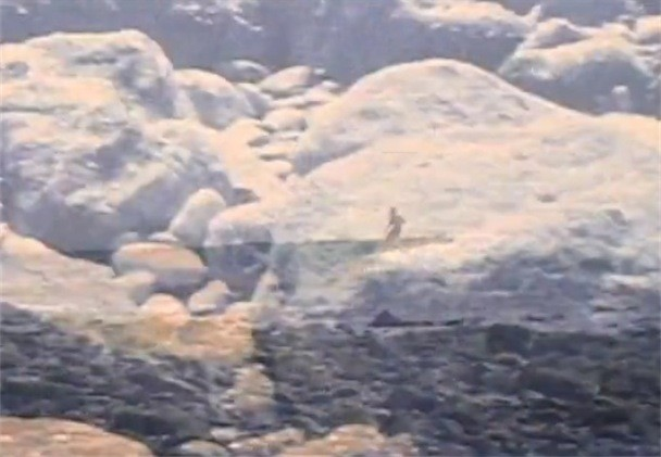 "Animal Collective - ""Guys Eyes"" Video"