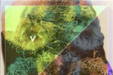 "Violens – ""Acid Reign"" (Stereogum Premiere)"