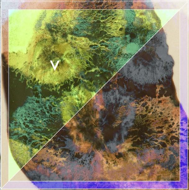 Violens Acid Reign Album Art