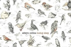 Edwyn Collins Losing Sleep Album Art
