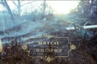 """Soft Cat – """"Blackbird"""""""