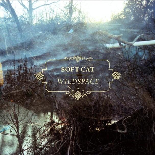 Soft Cat - Wildspace