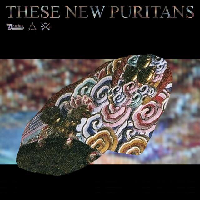 """These New Puritans """"Hologram"""" Album Art"""