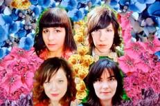 Wild Flag Promo 2010