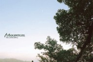 "Arbouretum – ""Destroying To Save"" (Stereogum Premiere)"