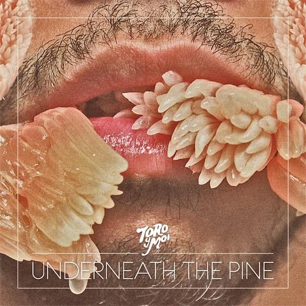 Toyo Y Moi Underneath The Pine Album Art