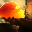 Flaming Lips Release Gummy Skulls, Panda Bear Gets A Skateboard