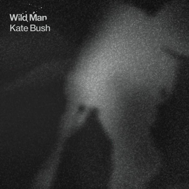 """Kate Bush - """"Wild Man"""""""