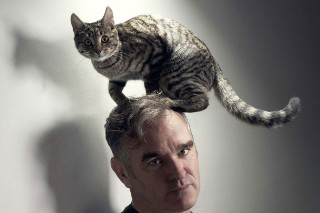 Moz Licenses Smiths Tune To UK Dept Store Ad