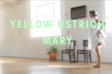 "Yellow Ostrich – ""Mary (Alternate)"" Video (Stereogum Premiere)"