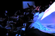 Watch Newly Released Footage From Animal Collective's 2010 Guggenheim Show