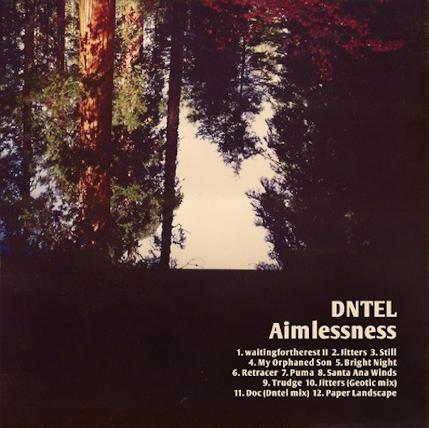 Dntel - Aimlessness