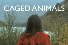 "Caged Animals – ""I Will Take My Own Hand"""