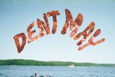 Dent May -