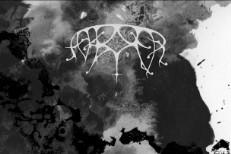 "Ash Borer – ""Descended Lamentations"" (Stereogum Premiere)"