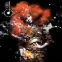 Stream Matthew Herbert's Latest Björk Remixes
