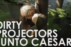 Dirty Projectors -