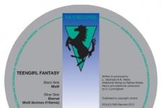 Teengirl Fantasy -
