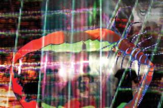 Premature Evaluation: Animal Collective &#8211; <em>Centipede Hz</em>