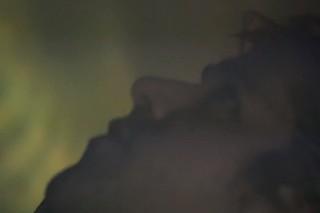 "Ariel Pink & Jorge Elbrecht – ""Hang On To Life"" Video"