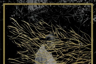 Album Of The Week: Forest Swords <em>Engravings</em>