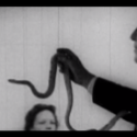 "Palma Violets – """"Rattlesnake Highway"""" Video"