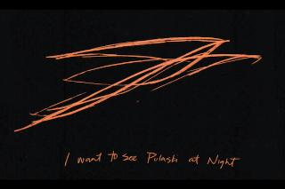 """Andrew Bird – """"Pulaski At Night"""""""