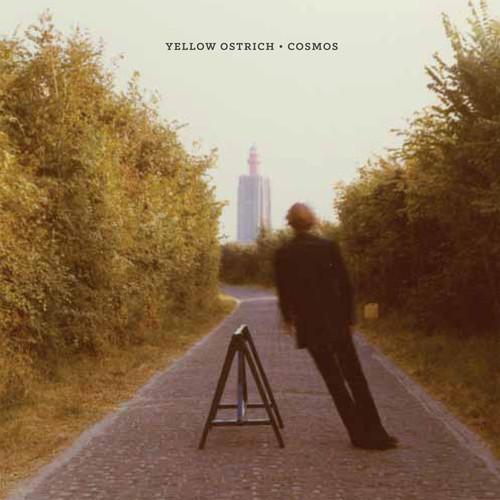 T'écoutes quoi, là, en ce moment même ?  - Page 11 Yellow-Ostrich-Cosmos