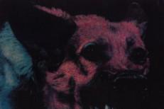Protomartyr album cover