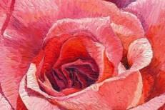 artworks-000070866634-f52u8a-t500x500