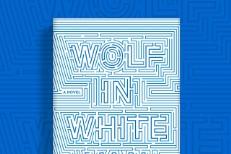 John Darnielle - Wolf In White Van
