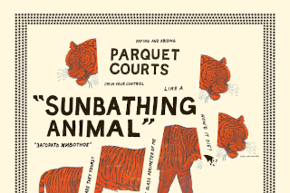 Album Of The Week: Parquet Courts <em>Sunbathing Animal</em>