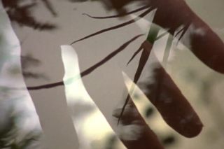 """Grouper – """"Made Of Air"""" Video"""