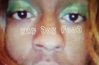 Download Mykki Blanco <em>Gay Dog Food</em> Mixtape