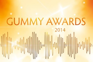 The 2014 Gummy Awards: Vote For The Best Music Of The Year