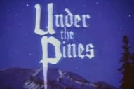 """New Bodies Of Water Video – """"Under The Pines"""""""