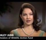 Ashley Judd Just Found Out That Sarah Palin Collects Severed Wolf Forelegs