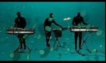 animal_collective-my_girls-video.jpg