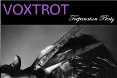 voxtrot-trepanation_party.jpg