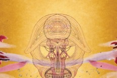 Devendra Banhart&#8217;s <em>What Will We Be</em> Album Info